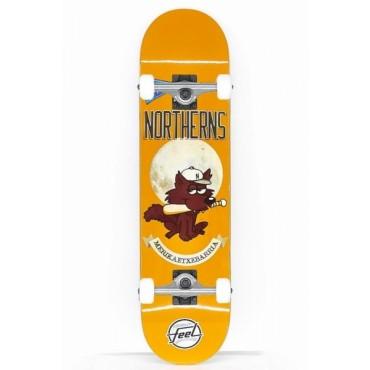 FEEL Northerns Complete Skateboard 7,6 orange